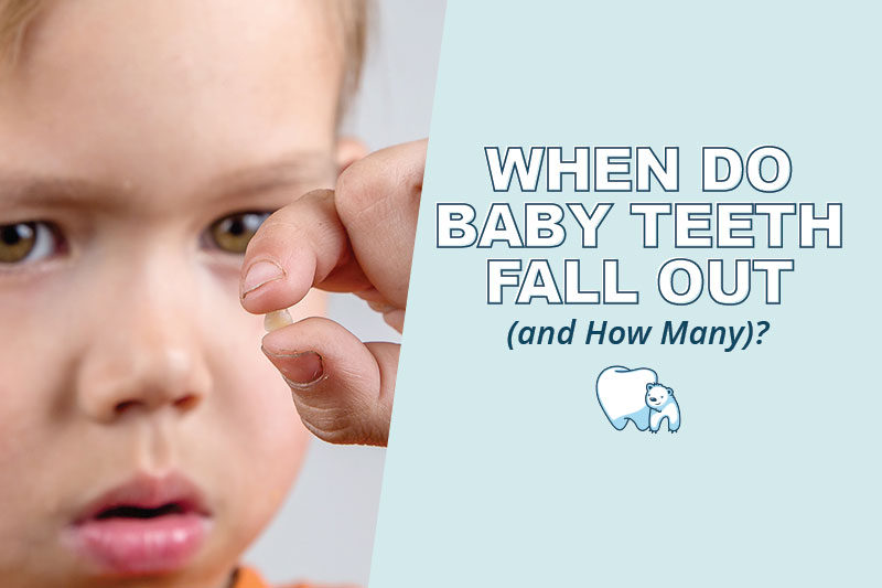When baby teeth fall out?